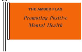Image result for amber flag